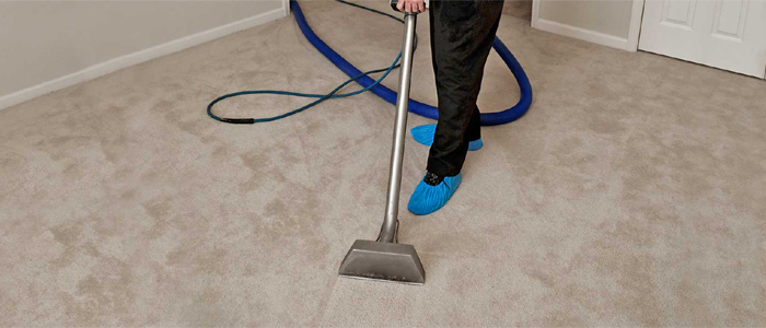 Carpet Cleaning House Business Office Dependable Affordable Best Binx North Bay